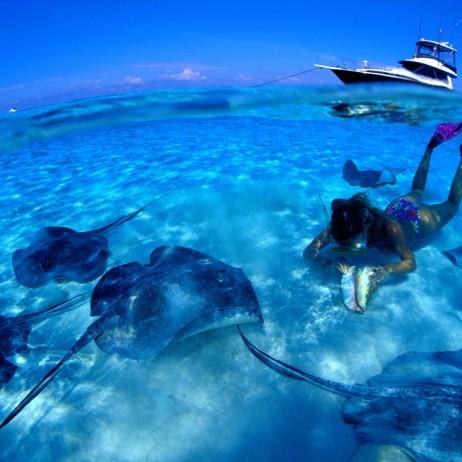 Snorkeling in Fort Lauderdale