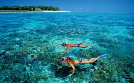 Fort lauderdale Snorkeling Tour Snorkel South Florida Pompano Beach