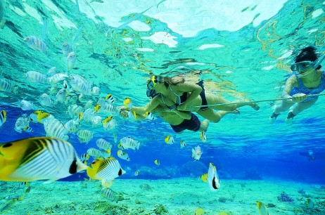 Snorkeling in fort lauderdale Florida Spear hutning fish while snorkeling
