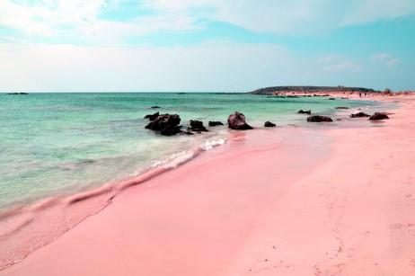 bahamas pink beach sand